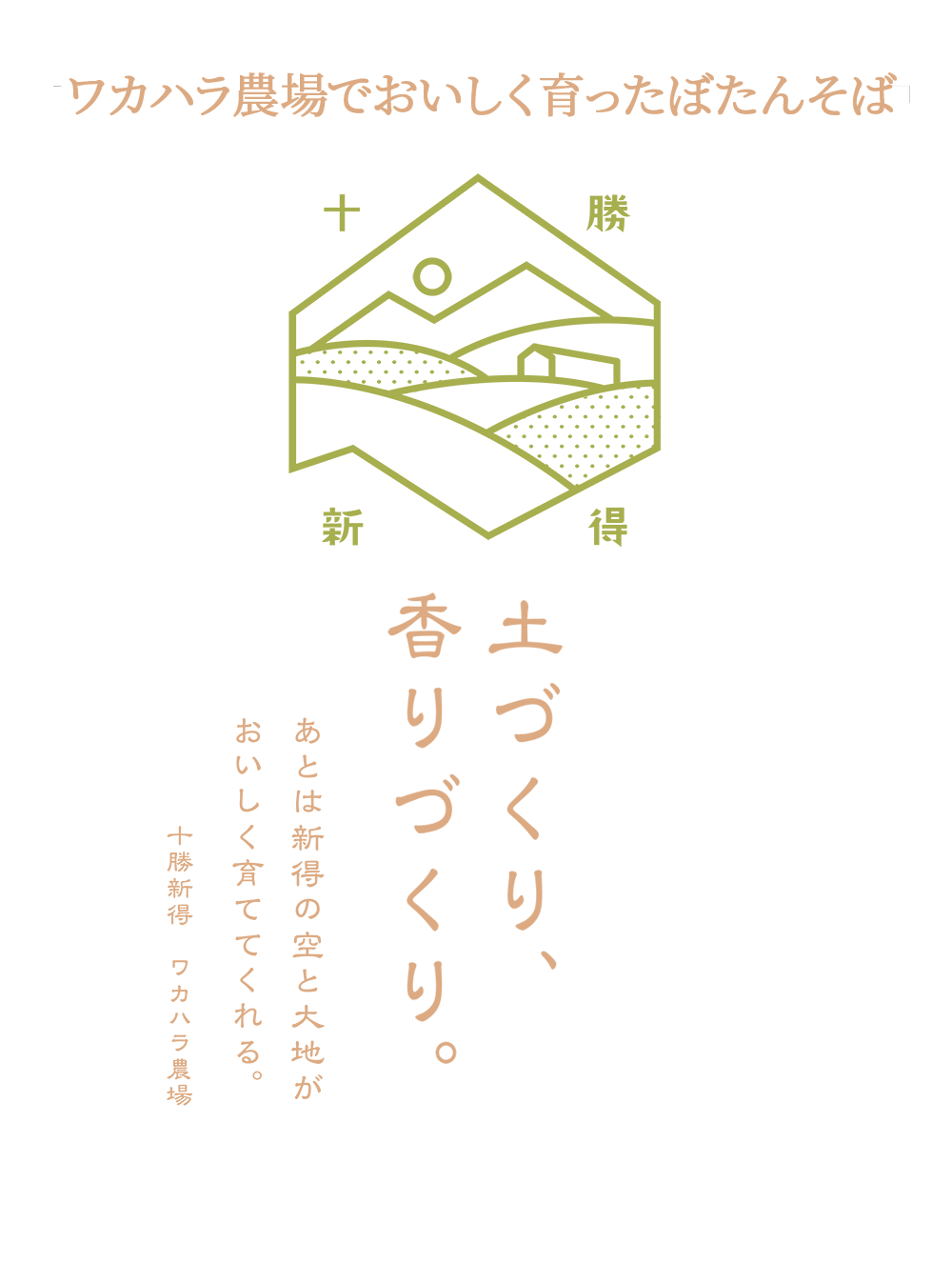 ぼたん蕎麦乾麺・野菜販売 ファームインワカハラ 合同会社みのり